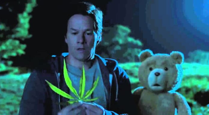 "alt = ""cannabis light"""